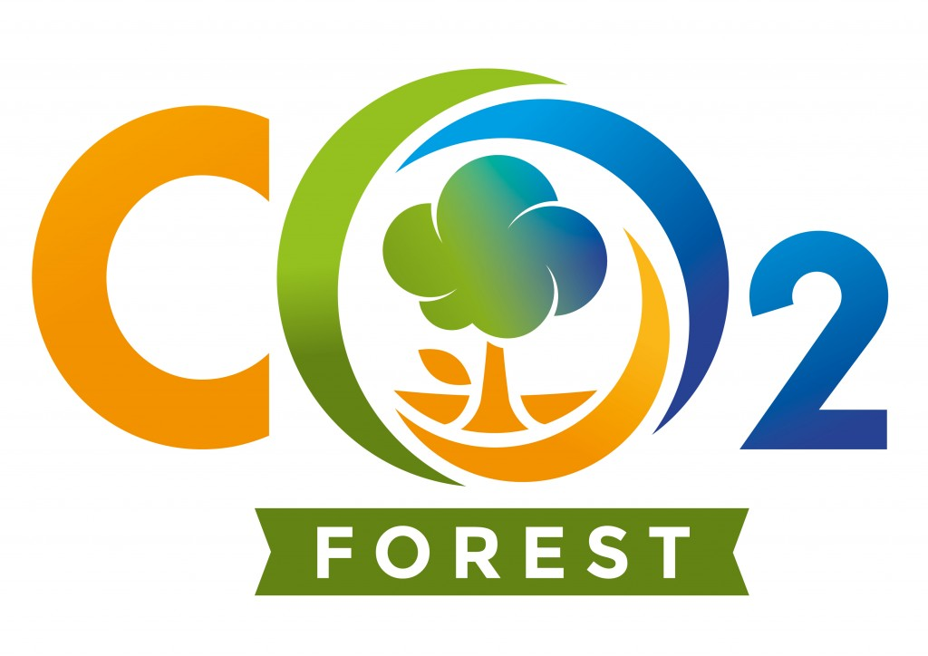 CO2 - FOREST