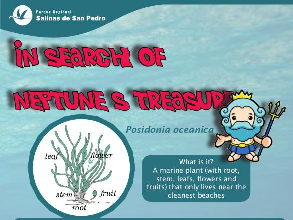 In search of Neptune's treasure. Este enlace se abrira en una nueva ventana.